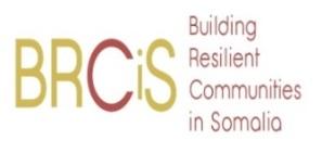 Building Resilient Communities in Somalia Bi-Annual Report 2020